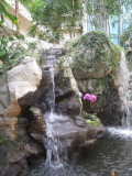Waterfall in the Atrium