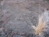 Petroglyphs near our hotel