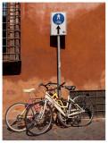 Ladri di biciclette?