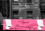 Agent Provocateur New York.