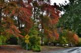 Mylor, Adelaide Hills