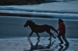 the horse whisperer 3/3