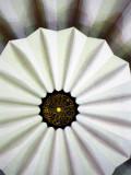 Masjid Negara's Ceiling