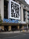 No More Fish in the Sea?