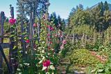 Wendy 's Flower Garden in Orchard