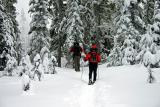 Snowshoeing in the Cascades
