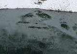 Face Of  Bigfoot Spotted In Lake Along My Railroad Run...