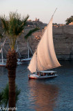 Felucca cruise on the Nile
