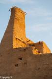 Siwa Oasis and the Great Sand Sea