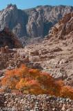 St Catherine, Sinai
