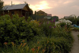 Dawn over a dacha garden, just outside Moscow's west