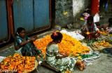 Plaiting marigolds on the street
