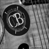The Cedric Burnside Project -- September 2011