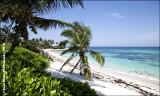 Wandering The Sea of Abaco, Bahamas 2012