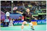 Hong Kong Open Badminton Super Series 2007 Yonex-Sunrise (Nov 30, 2007)