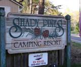 shady_pines