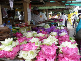 Flower stall, Temple of the Sacred Tooth Relic