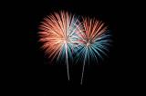 Fireworks taxonomy