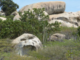 There are some mighty strange rock formations on the island...