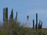 The California Lighthouse