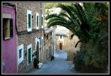 Calle -  Street