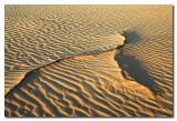Dunas  -  Sand Dunes