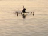 Boatman Returns.jpg