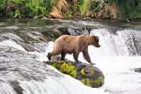 Alaska june