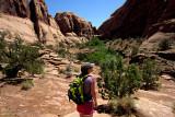 Varied Moab Landscape.