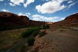 13-Moab Utah-5D-web.jpg