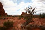 15-Moab Utah-web.jpg