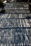 Todos Santos Walkway Shadows