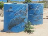 Cabo Pulmo Water Tanks