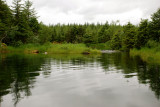 Mendenhall Lake