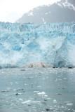 Margerie Glacier Calving into Glacier Bay