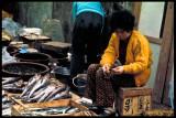 Fish Market, Chunchon