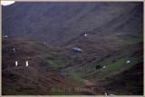 JED-MAKKAH expressway_02.jpg