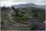 WadiShafa_110406.jpg