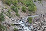 Water Streams along the road.jpg