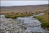 Kala pani (Black waters) at Deosai plains.jpg