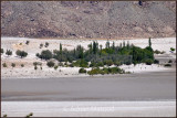 White sands and Indus river.jpg