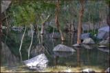 Near Khaplu.jpg