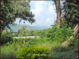 View from Margalla hills in Islamabad.JPG