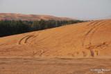 35- Desert View.JPG