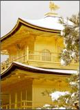 The Golden Pavilion in the snow 2 - Kyoto
