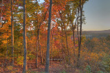 EVENING SUN ON FALL LEAVES -  AN HDR IMAGE