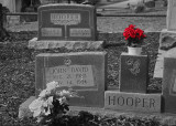 CEMETERY  -  ISO 100  -  PARTIAL COLOR RED PICTURE EFFECT