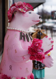 IN THE PINK  -  ISO 100  -  SONY 50mm f/1.8 E-MOUNT LENS