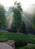 SUN RAYS THROUGH LIFTING FOG  -  TAKEN WITH A SONY 18-200mm E-MOUNT LENS