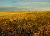 Eastern Plains of Colorado